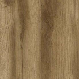 Scotia Oak